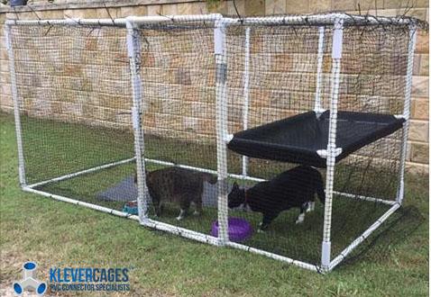 pvc-cat-enclosure-nannie1.jpg