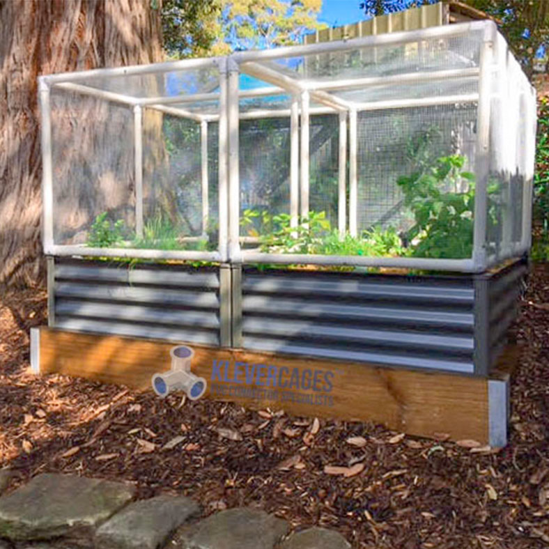 Raised garden bed with wood sleepers and corrugated iron base. Protected from pests such as birds, slugs, snails and bugs with fine mesh netting on a PVC frame with a door for easy access from Klever Cages