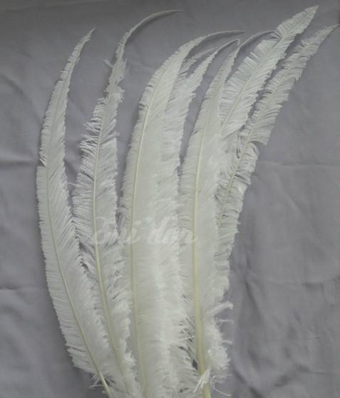 Nandu Ostrich Feathers 18 inch- White
