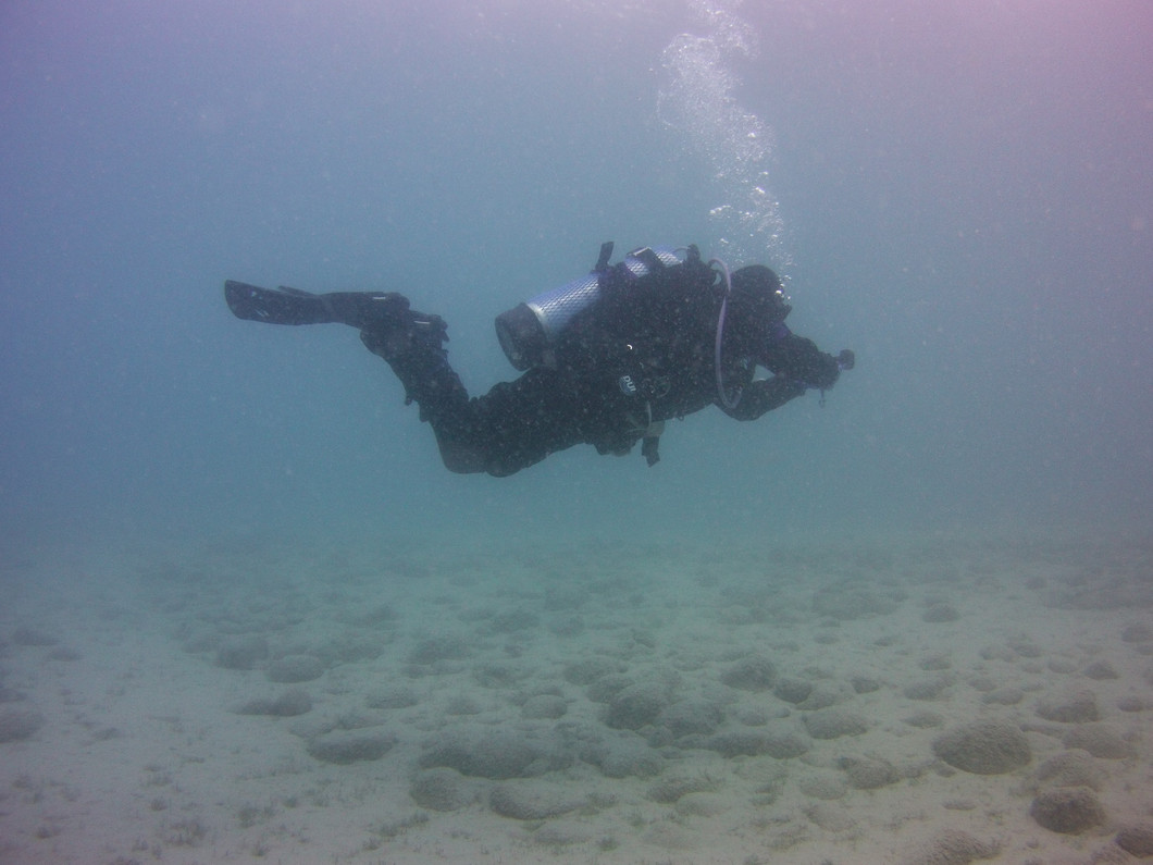 Time to Dust Off Your Dive Gear and Get Ready for Local Dive Season!!
