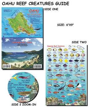 Waterproof Fish ID Card - Oahu Hawaii