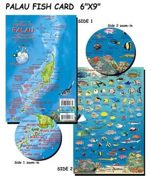 Waterproof Fish ID Card - Palau