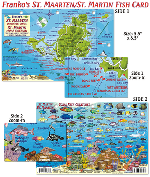 Waterproof Fish ID Card - St Martin
