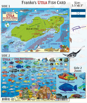 Waterproof Fish ID Card - Utila