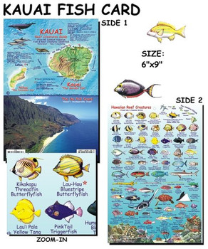 Waterproof Fish ID Card - Kauai Hawaii