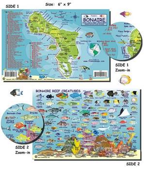 Waterproof Fish ID Card & Map - Bonaire
