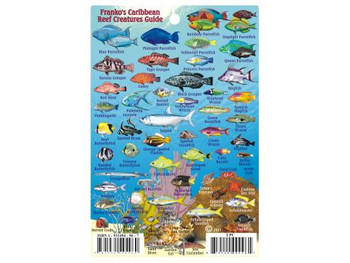Waterproof Fish ID Card & Map - Caribbean