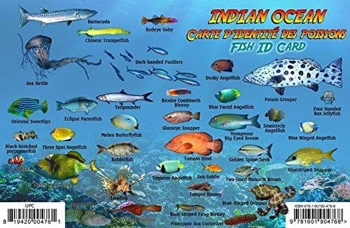 Fish Id Card for Indian Ocean
