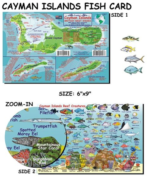 Waterproof Fish ID Card & Map - Cayman Islands