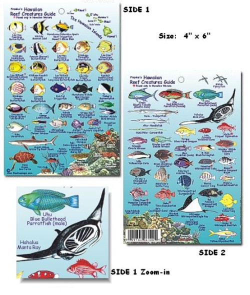 Waterproof Fish ID Card - Hawaii
