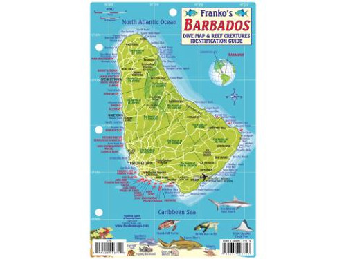Waterproof Fish ID Card - Barbados