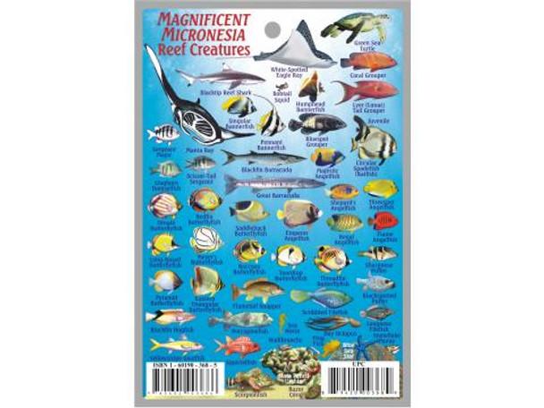 Waterproof Fish ID Card - Micronesia