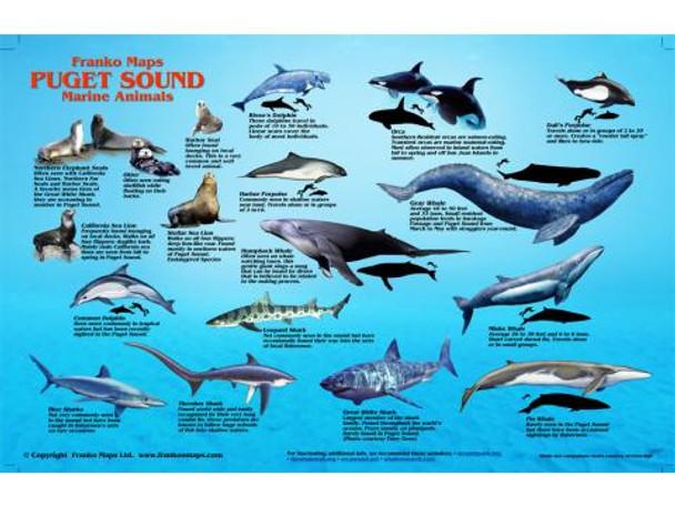 Waterproof Fish ID Card - Puget Sound