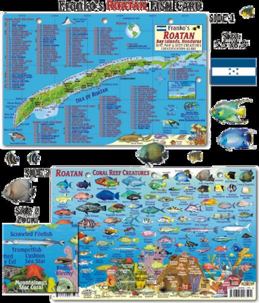 Waterproof Fish ID Card - Roatan