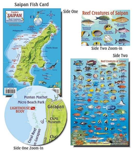 Waterproof Fish ID Card - Saipan