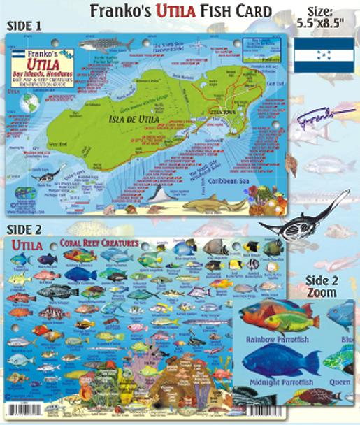 Waterproof Fish ID Card - Utila