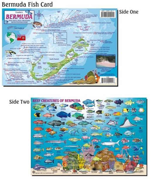 Waterproof Fish ID Card & Map - Bermuda