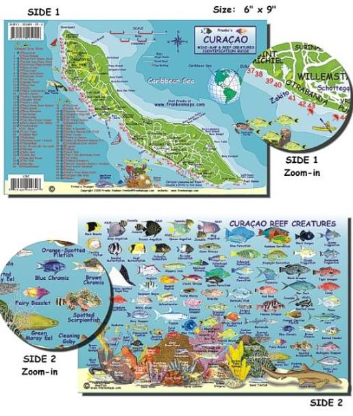 Waterproof Fish ID Card - Curacao