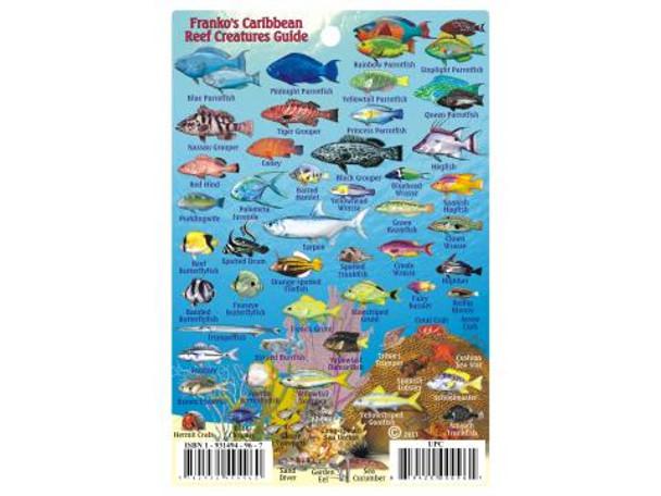 Waterproof Fish ID Card & Map - Caribbean