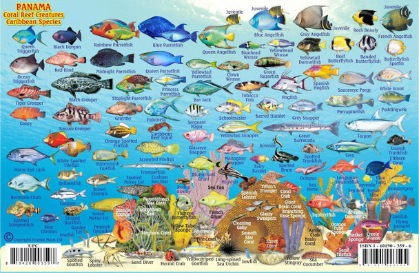 Waterproof Fish ID Card - Panama Caribbean