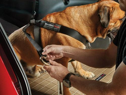 WeatherTech Pet Safety Harness