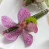 Pink Mokara Boutonniere