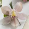 Pink Cymbidium Boutonniere