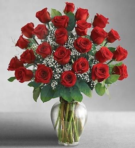 Classic 2 Dozen Roses