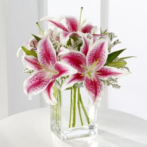 pink Stargazer lilies, lily