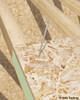 Holz Technic Washer Head Screws 6mm x 90mm (100 pcs) (TLL680)