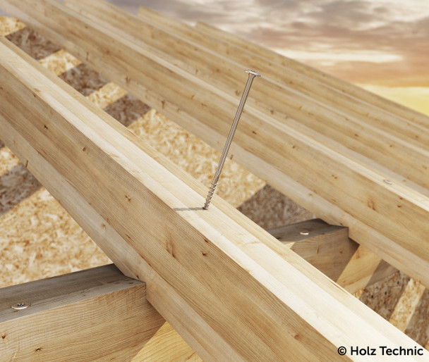Holz Technic Washer Head Screws 8mm x 360mm (50 pcs) (TLL8360)