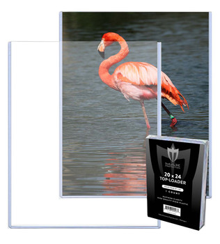Protect 11 X 17 Toploader Prints and Documents 10 Pack Store and Display 11X17 Photographs