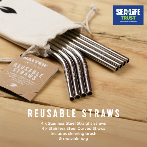 Salter Eco Reusable Stainless Steel Straws, Set of 8