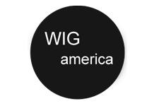 wig-america.jpg