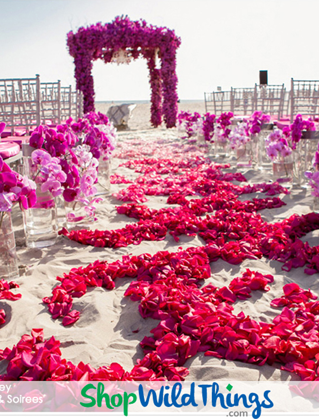 Chandeliers and Crystals Pack Sparkle for A Royal Beach Wedding - Photos & Decorating  Ideas