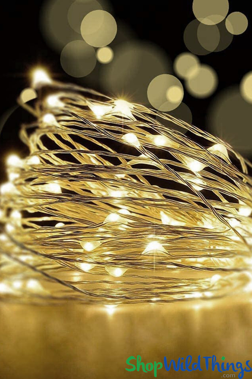 Silver Wire LED fairy lights