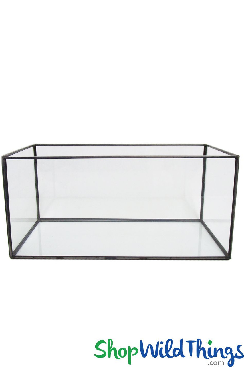 Picture of: Stackable Rectangular Terrariums Clear Glass With Gold Or Black Trim Shopwildthings Com