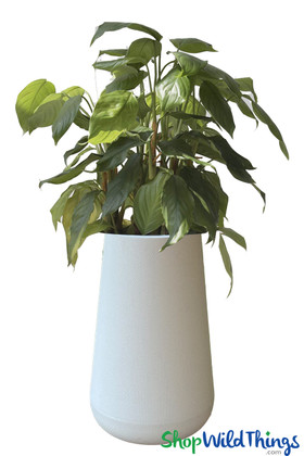Tall Modern White Outdoor Indoor Plastic Planter ShopWildThings.com