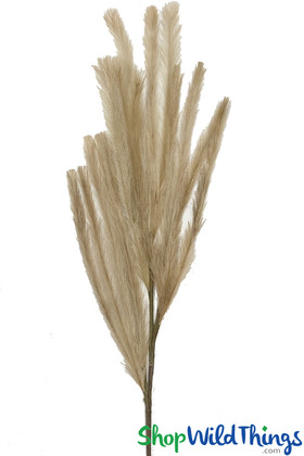 Faux Pampas Grass Artificial Grass , Natural Color ShopWildThings.com