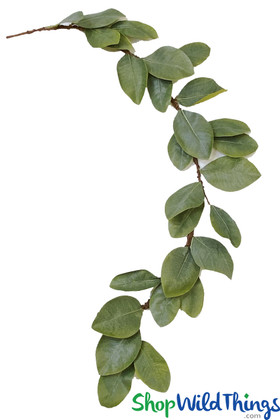 Natural Magnolia Leaves Artificial Leaf Garland for Decorating Mantles, Backdrops and Doorways ShopWildThings.com