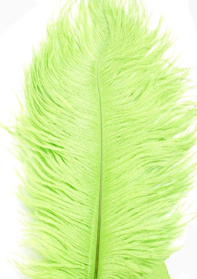 "BOGO Apple / Lime Green Ostrich Feathers 29""-32"" - SPADS"
