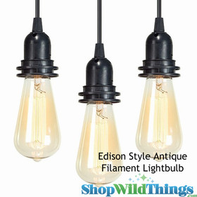 "BOGO Antique ""Edison Style"" Lightbulb - Squirrel Cage Filament"