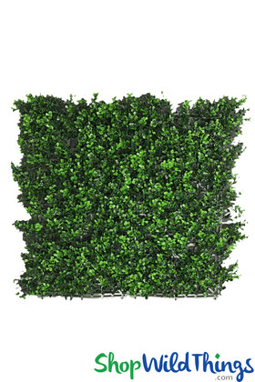 Fire Rated Boxwood Professional Installation Greenery Plant Panels