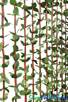Green Jungle Leaves Bamboo Beaded Curtain | ShopWildThings.com