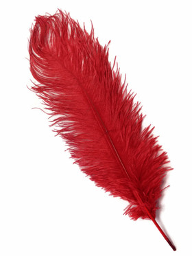 "BOGO Red Ostrich Feathers - 22"" - 32"""