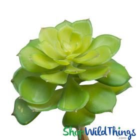 Artificial Echeveria Nurnberg Succulent, Bendable Stem Fake Cactus by ShopWildThings.com