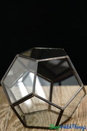 """Geometric Pentagon Terrarium & Candle Holder- Black - 4 3/4"""""""