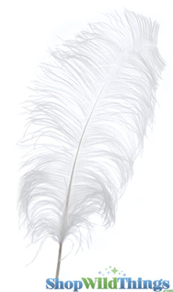 White Ostrich Feathers for Centerpiece Vases, Tall Fluffy Spads for Crafts & Costumes, Real Feathers by ShopWildThings.com