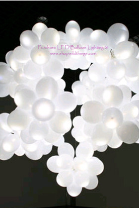 BOGO LED Balloon Light White -Steady Light 12 pcs