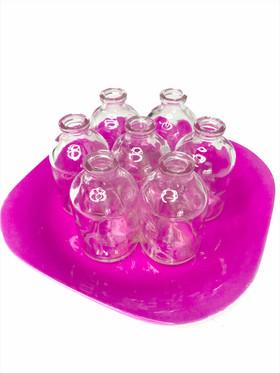 Flower Cutting Holder - Pink Plate & 7 Glass Bottles